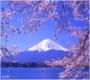 冬季恋歌  日本北海道七日游